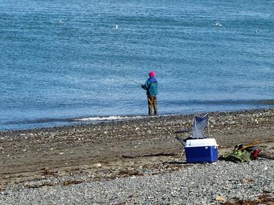 Homer, Alaska (10)