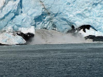 Kenai Fjords National Park Six-Hour Cruise, Alaska (14)