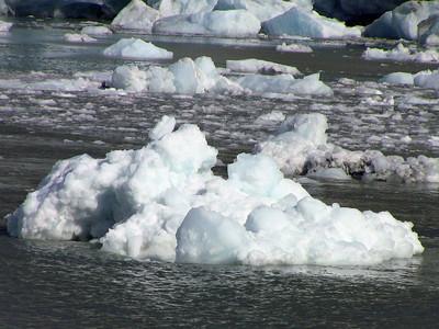 Kenai Fjords National Park Six-Hour Cruise, Alaska (16)