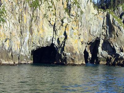 Kenai Fjords National Park Six-Hour Cruise, Alaska (8)