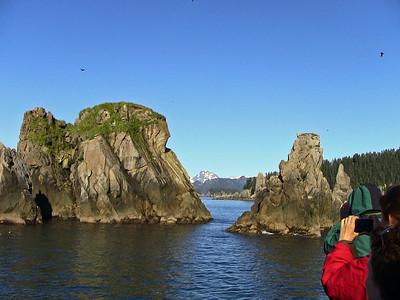 Kenai Fjords National Park Six-Hour Cruise, Alaska (1)