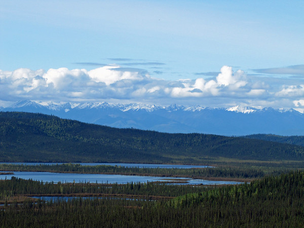 Tetlin National Wildlife Refuge, near Tok Alaska  (2)