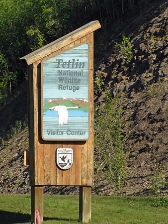 Tetlin National Wildlife Refuge, near Tok Alaska  (1)