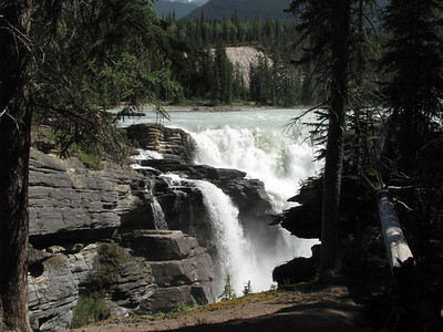 Maligne Canyon, Jasper National Park (4)