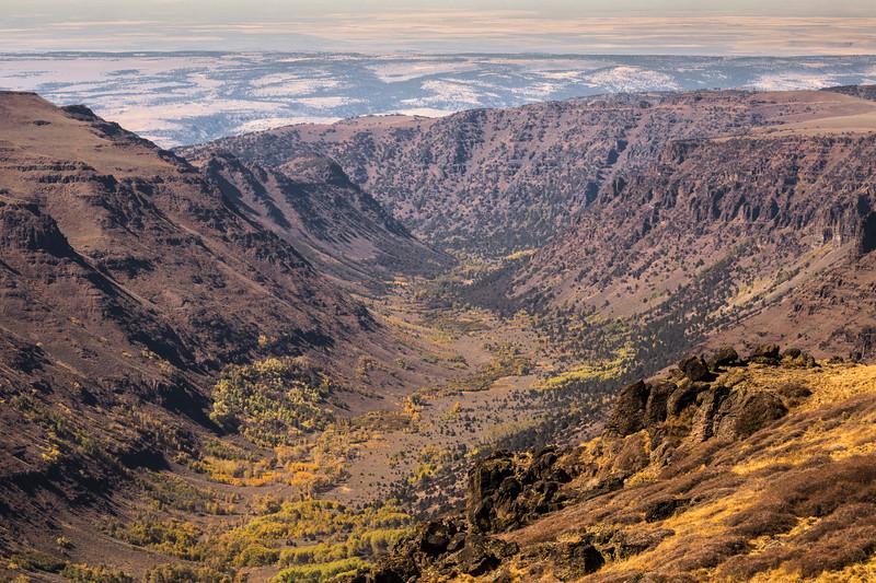 Big Indian Gorge - Steens
