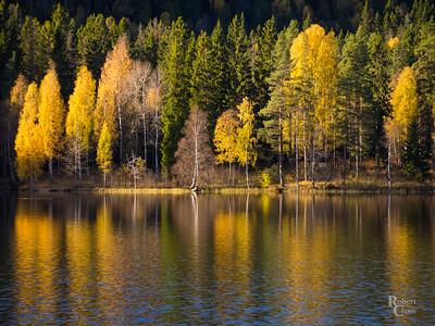Impressions on an Autumn Lake