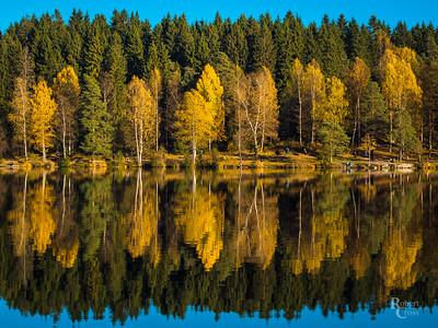Norwegian Autumn Symmetry