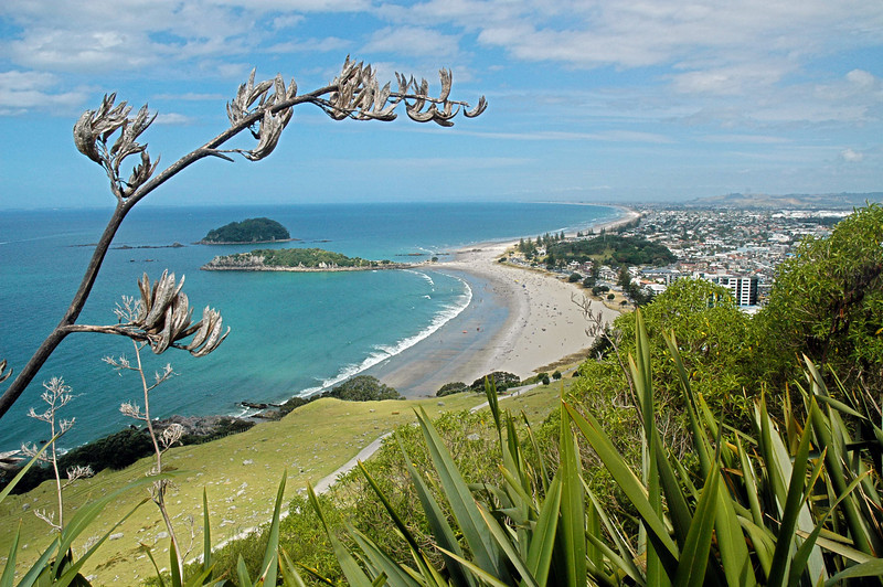 View from Mt Muganui, Tauranga New Zealand