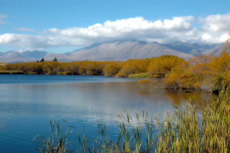 Lake Alexadria, Central Otago, New Zealand