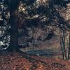 Autumn at Sacro Monte