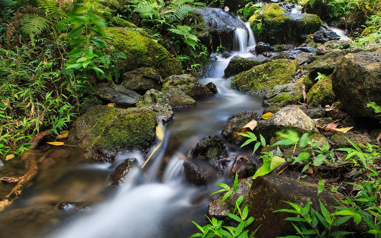 Simple Cascade