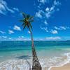 Blue Paradise - Oahu 2017