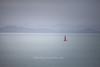 Sailboat on the Tamaki Strait