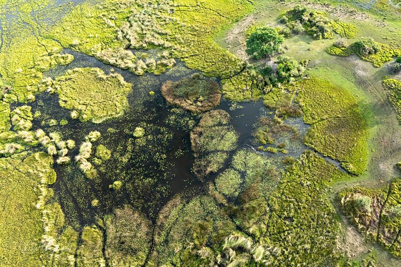 Arial view II - Okavango Delta, Botswana, 2019