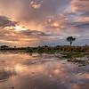 Okavango Delta sunset, Botswana, 2019
