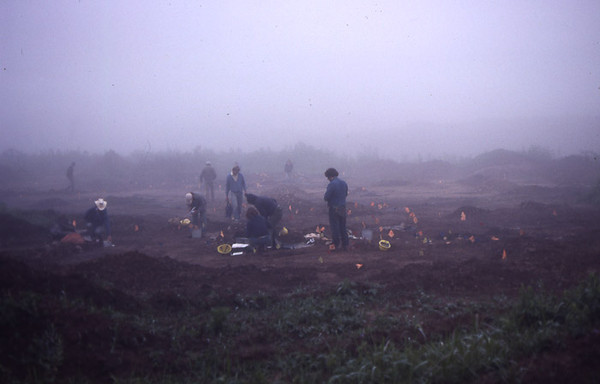 working in Mist
