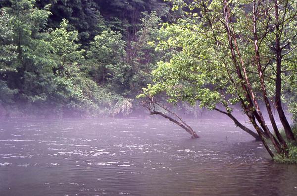 Mist on River