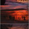 Chowan Sunset
