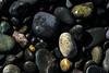 Rialto Beach Gems