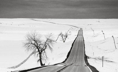 The Beauty of Starkness in the Snow Covered Nebraska Countryside