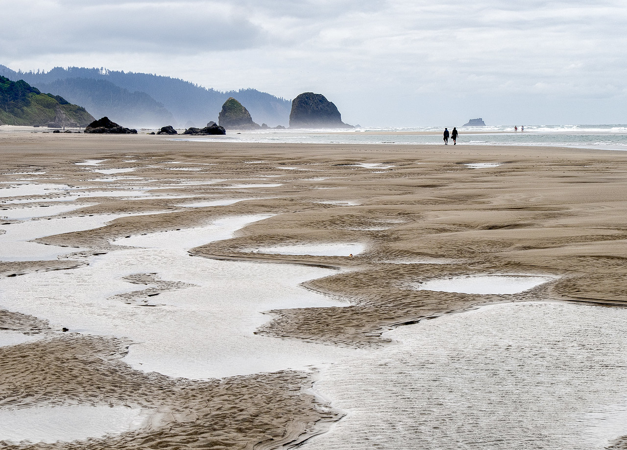 Walking on the Beach at Low Tide