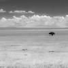 Tanzania'13-2322