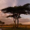 Tanzania'13-2160