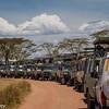 Tanzania'13-2060