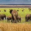 Tanzania'13-2547