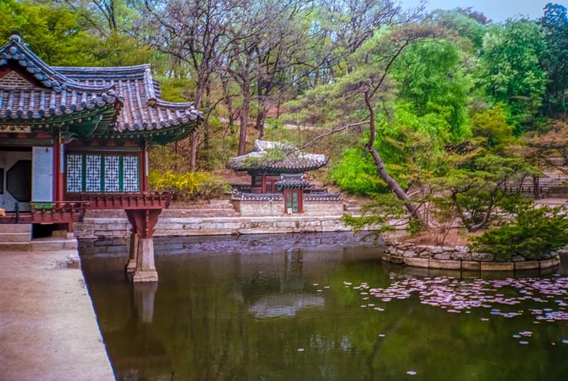 Buyongji