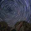 Star Trail at Joshua Tree