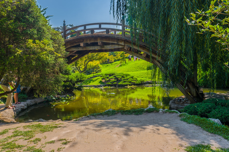 Bridge at the Japanese Garden.