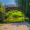 Bridge at the Japanese Garden.