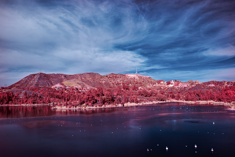Infrared shot, processed in Aerochrome style to highlight the sign.