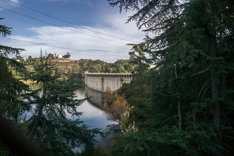 The back of Mulholland Dam through the pine trees that surround the lake.