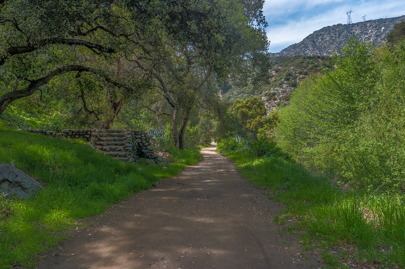 Trail up Arroyo Seco.