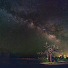 The Milky Way over Diaz Lake with two dead trees illuminated.