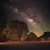 The Milky Way core arches over the Coastal Live Oak in Live Oak Tank.