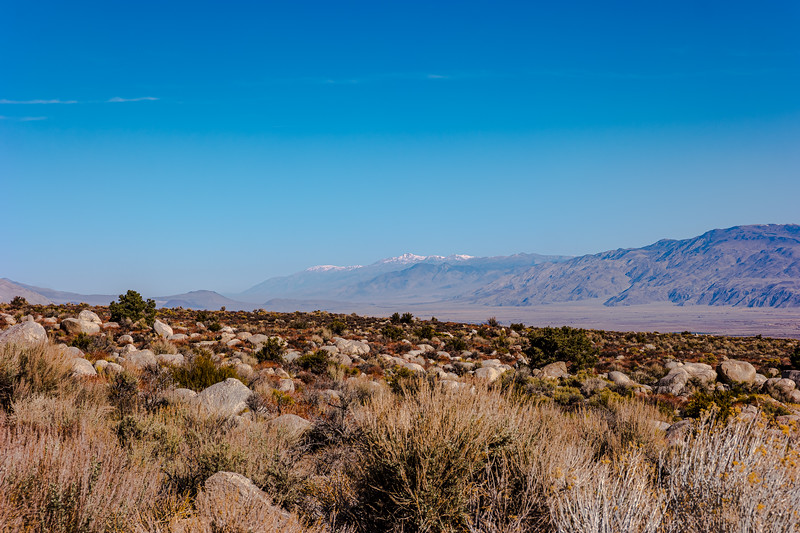 Owens Valley with White Mountain Peak(center).