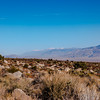 Owens Valley with White Mountain Peak(center).