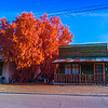 Randsburg street in IR with the IRChrome filter.