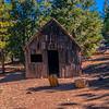Tom Vincent's cabin.