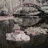Pond at the Japanese Garden