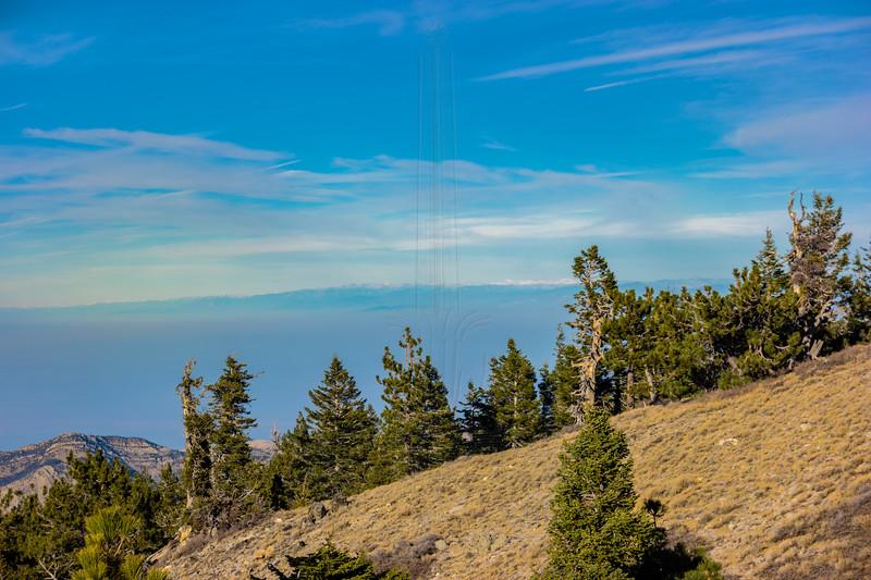 Eastern Sierra from Mt. Pinos