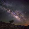 Milky Way at Joshua Tree