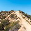 The Hogback Trail