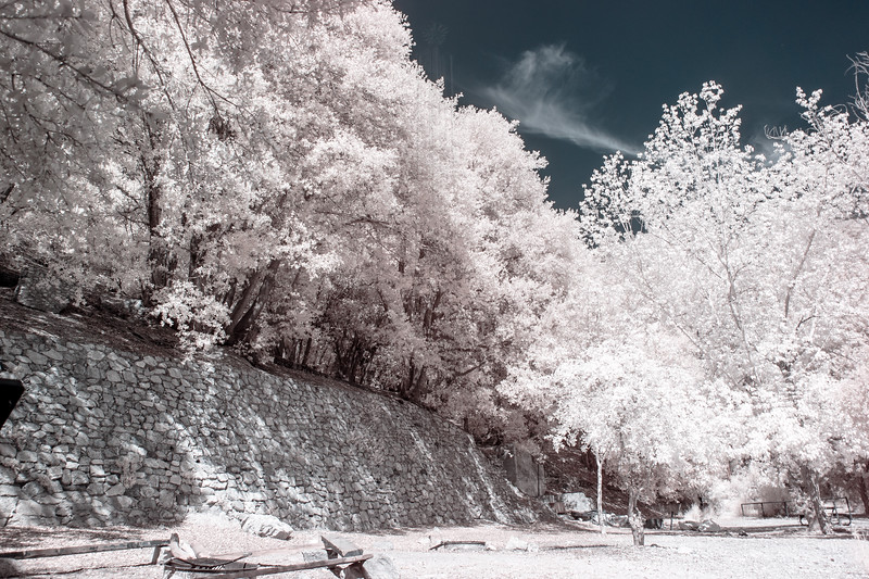 """Ye Alpine Tavern""(in infrared)."