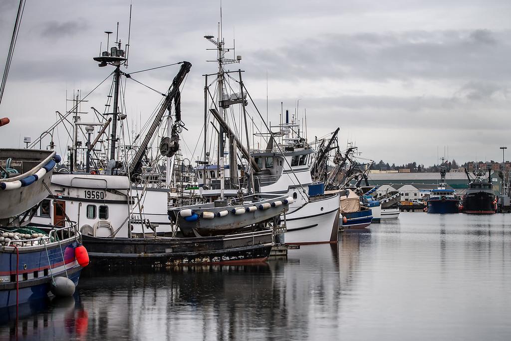Fisherman's Terminal