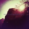 Love is not consolation.  It is light.  ~Friedrich Nietzsche
