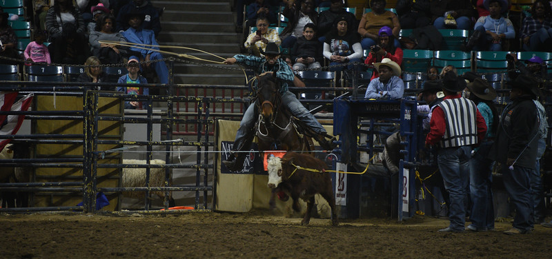 Every year Denver kicks off the National Western Stock Show with a city-wide parade followed by rodeo competitions for the next few weeks. Emily Maxwell | I Am Denver